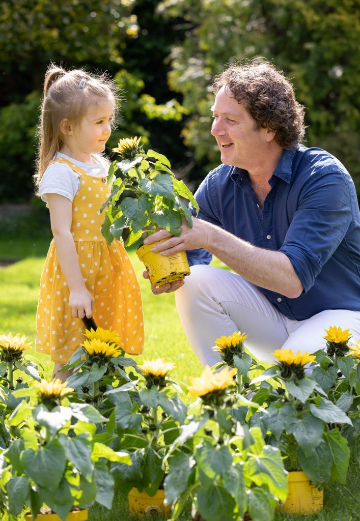 Diarmuid Gavin & little girl in yellow dress with sunflower.  Press PR Photocall