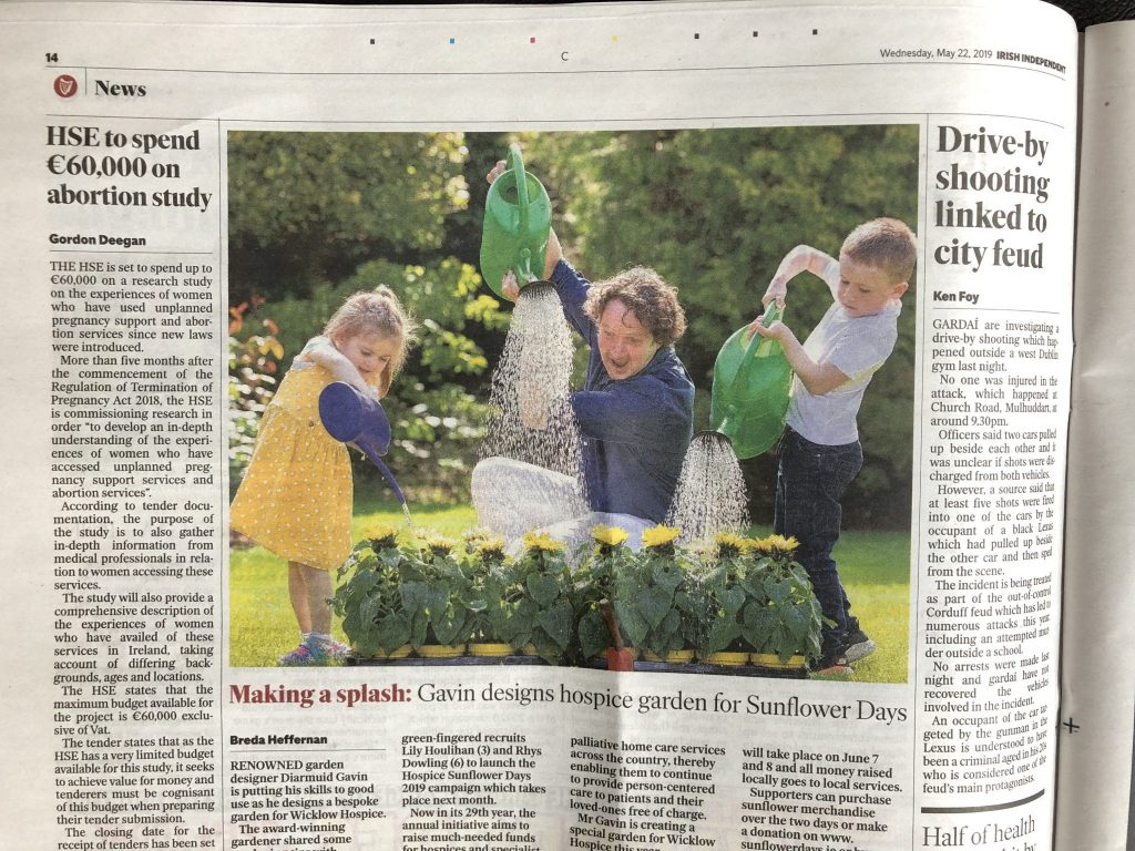 Diarmuid Gavin & little girl in yellow dress & little boy pouring water on sunflowers. Press tearsheet Irish Independent.  PR Photographer Dublin:  HOSPICE SUNFLOWER DAYS 2019 Launch Photocall